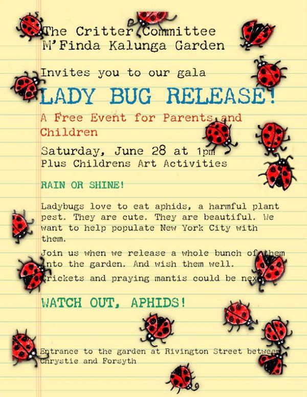 ladybug2014sm